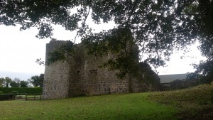 Crevinish Castle 2